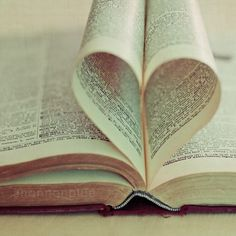 heart book photography / book lover valentine's day door shannonpix