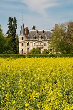 French Chateau ~ Chateau Le Boisrenault | Flickr - Photo Sharing!