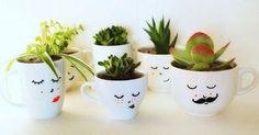 Gotowe,  posadzone! wesoła rodzinka sukulentów  #faramuszka #kwiaty #rośliny #sukulent #sukulenty #kubki #doniczki #minimalizm #zielono #minimalism #mugs #blackandwhite #succulents #succulent #funny #plants #green #family #moustache