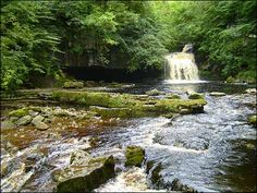 One of my favourite places in the Yorkshire Dales Yorkshire England, Yorkshire Dales, North Yorkshire, British Country, Where The Heart Is, Country Life, Waterfall, Beautiful Places, Spaces