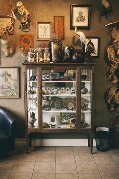 Curiosity cabinet at Iron Works Tattoo, Portsmouth, NH. Curiosity Cabinet, Curiosity Shop, Cabinet Of Curiosities, Natural Curiosities, Deco Boheme, Interiores Design, Interior And Exterior, Decoration, Living Spaces