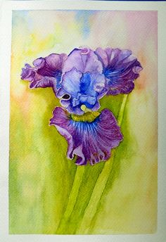 Watercolour by Ana Lucia Sobral