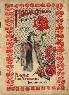Image result for smithsonian vintage postcards 1920