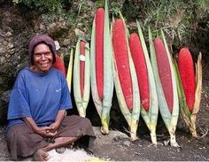 """Pandanus conoideus Fruit Papuans call them kuansu. Indonesians call them buah merah (""""red fruit""""). The fruit is typically prepared by splitting it, wrapping it in leaves, and cooking it in an earth oven."""