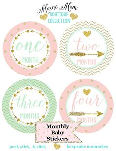 Hey, I found this really awesome Etsy listing at https://www.etsy.com/listing/234229799/baby-girl-monthly-stickers-mint-blush