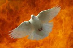 baptism_of_fire