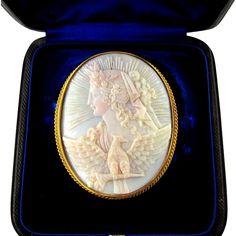 Large Antique Victorian 18K Gold Shell Cameo Brooch / Pin, Original Box