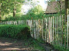 English Chestnut Fencing