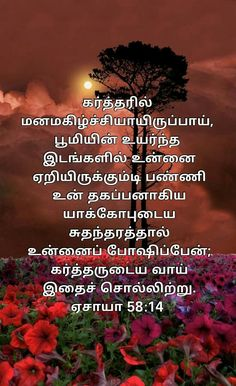 Jesus Quotes, Bible Quotes, Bible Verses, Tamil Bible Words, Jesus Photo, Bible Promises, Word Of God, Holy Spirit, Faith