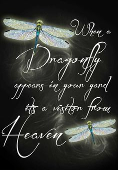 When a dragonfly appears in your yard it's a visitor from Heaven