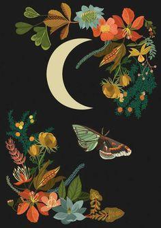 – Dawn Cooper Illustration The post – Dawn Cooper Illustration appeared first on Kunst. Art Et Illustration, Butterfly Illustration, Nature Illustrations, Arte Floral, Moon Art, Mandala Art, Botanical Prints, Wallpaper Backgrounds, Art Inspo