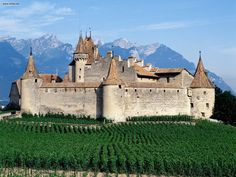 The old family homestead in Aigle, Switzerland... was also a prison, now is a winery.
