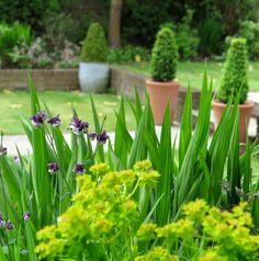 Your best garden pots ever – 6 tips for brilliant container gardening