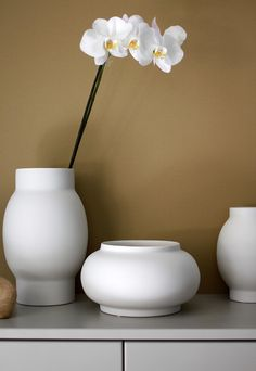 new vases from AMM X DBKD