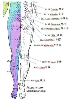 Locations of Acupuncture Points Used for Urinary Incontinence in Relation to Posterior Dermatomes: It is important to note that Percutaneous Posterior Tibial Nerve Stimulation (PTNS or electroacupuncture on SP6) is only one element of acupuncture treatment for urological problems. A wide variety of acupuncture points and stimulation methods are available to influence urological function. http://www.acupuncturemoxibustion.com/acupuncture-points/overactive-bladder-points/