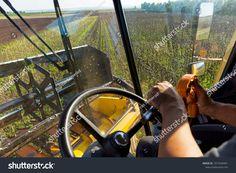 Sunflower harvesting in Lower Austria Austria, Harvest, Photo Editing, Royalty Free Stock Photos, Explore, Pictures, Image, Editing Photos, Photos