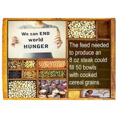 We can end world hunger....so sad when that steak should be raised at pasture.