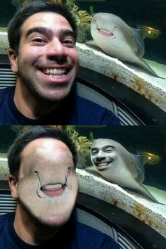 Not a lot of face swaps can make me laugh. Stupid Funny Memes, Funny Relatable Memes, The Funny, Funny Life, Funny Stuff, Funny Math, Memes Funny Faces, Funny Fails, Funny Humor