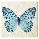 Found it at Joss & Main - Blue Butterfly Canvas Print, Oliver Gal