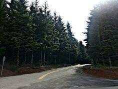 Outside of St. Helens, Oregon