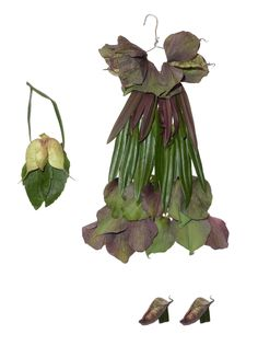 """hippy-chic-helebores-horticouture-dress-sandra-alcorn One of a number of neat images -- tiny """"dresses"""" made from flower petals and leaves by Sandra Alcorn Beats regular paper doll clothes all to heck!"""