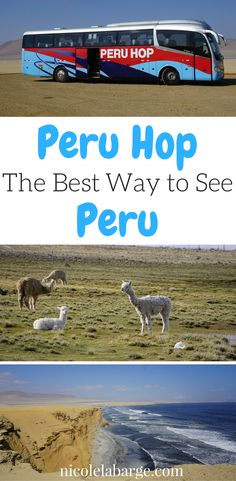 Want to travel around Peru Safely and efficiently? Check out Peru Hop www.peruhop.com