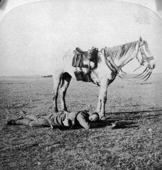 inch) Print (other products available) - A horse patiently waits by his sleeping master on the march to Bloemfontein during the Boer War, circa (Photo by Hulton Archive/Getty Images) - Image supplied by Fine Art Storehouse - Print made in Australia