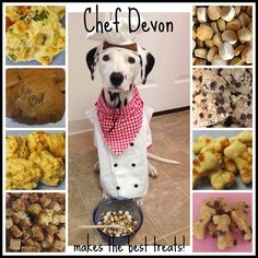 Chef Devon makes the best treats!  www.etsy.com/shop/DevonsDoggieDelights  #3ofheartspetbakery #dalmatians #devonthedalmatian #dogtreats #homemadedogtreats #spoileddog