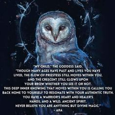 Magick Every Day Owl Quotes, Witch Quotes, Pagan Quotes, Life Quotes, Wiccan Spells, Witchcraft, Magic Spells, Animal Spirit Guides, Spirit Animal Owl