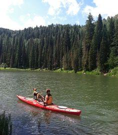 dog, kayaking, pooch, paddling, how-to-kayak-dog