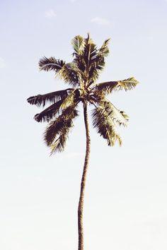 Weather — Cayman Liv
