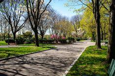 JFK Park close to Charles River near Harvard Square.