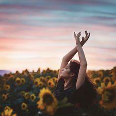 Sunflower field in Oahu. Model: Rachael Bede