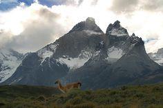 Torres del Paine, Los Cuernos valley by Cascada Expediciones, via Flickr