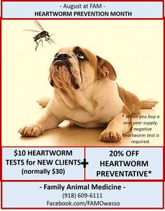 FAM's August Special aimed to get as many pets on heartworm preventative as possible!