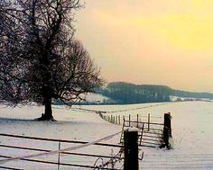 Winter in Herefordshire UK #dailyshoot #365   Heavy snowall in Hereford UK so got out early morning with my camera to shoot the snow! Found that the lines and compositions were more pronounced .. just shot a snap but wanted to take more time to check the exposure.
