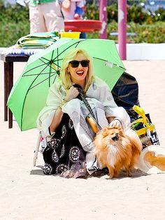Gwen Stefani stayed shaded from those pesky UV rays with an umbrella and snazzy sunnies! Looks like her and her pooch enjoyed a FAB beach day!