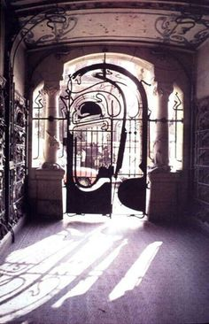 Art nouveau door - Victor Horta