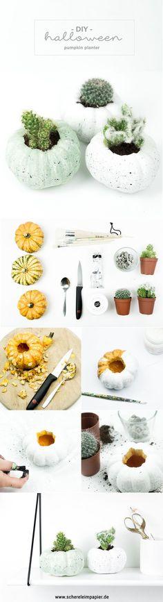 DIY Halloween Deko basteln: Kürbisse mit Farbe besprenkeln & mit Kakteen bepflanzen   Do it yourself Tutorial mit Video auf dem Blog!   Herbst