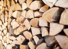 firewood shortage Green Ash Tree, Log Burning Stoves, Wood Burning, Stress And Mental Health, Poplar Tree, Willow Wood, Old Fireplace, Fast Growing Trees, Wood Store