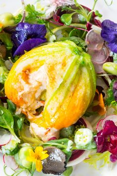 Francesco Mazzei's baccalá stuffed courgette flowers recipe is a real celebration of summer. Beautifully presented with edible flowers and crisp salads, the flowers are stuffed with creamy salted cod baccalá and grilled with cheese to serve.
