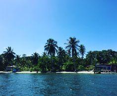 Nos despedimos de Carenero con esta espectacular vista desde el bote.  We say goodbye to Careening Cay with this spectacular view from the boat.  Bocas del Toro Panamá.  #bocasdeltoro #carenero #Caribe #deislaenisla #naturaleza #careeningcay #caribbean #islandhopping #nature