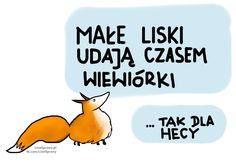 Lisie żarciki Positive Mind, Good Mood, Motto, Quotations, Haha, Clever, Comedy, Fox, Positivity