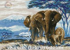 VK is the largest European social network with more than 100 million active users. Elephant Cross Stitch, Cross Stitch Animals, Cross Stitch Designs, Cross Stitch Patterns, Safari, Moose Art, Photo Wall, Africa, Embroidery