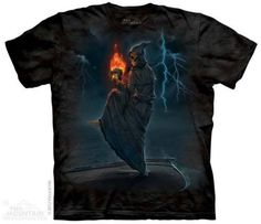 5604901dd0a 18 Best T-Shirts - Insect Collection images | T shirts, Insects ...