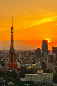 taken at the World Trade Center in Tokyo, Japan Tokyo Night, Tokyo Tower, Japan Photo, Japanese Architecture, World Trade Center, Night Skies, Paris Skyline, Scenery, Sunset