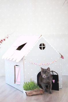 Que tal fazer uma dessas para seu gatinho? #cats