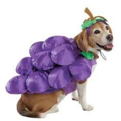 Purple Grapes Dog Halloween Costume