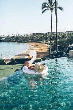 Swan pool floatie