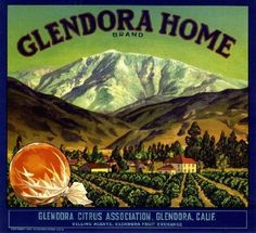 Amazon.com: Glendora Home Orange Citrus Fruit Crate Box Label Art Print: OnlineWall Art and Framing: Home & Kitchen